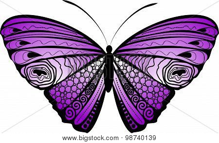 Background with  colorful butterfly, hand-drawing. Vector illustration.