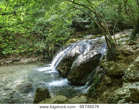 Small Falls In The Green Deciduous Forest