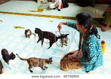Jumping Cat Monastery, Myanmar