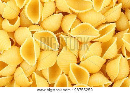 Shell pasta background