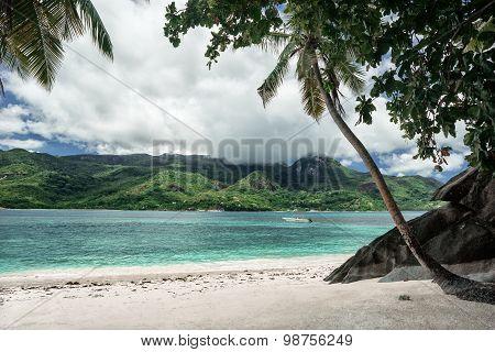 Tropical Sandy Beach, Seashore Landscape, Nature Of Seychelle Island