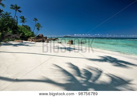 Beautiful Tropical Sandy Beach With A Shadow Of The Coconut Palm Tree