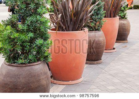 Classic huge flower pots
