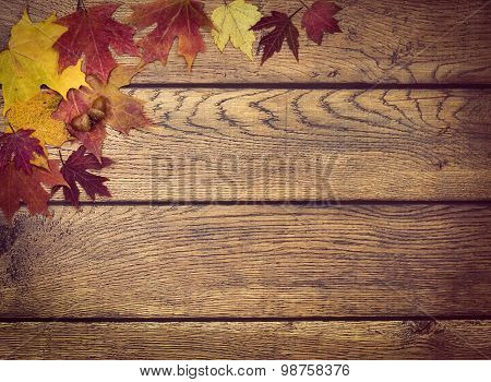Autumn Leaves And Acorns On Rustic Wooden Background