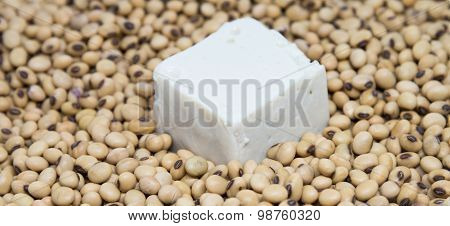 Tofu On Soybeans Background