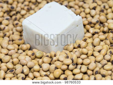 Tofu On Soybeans