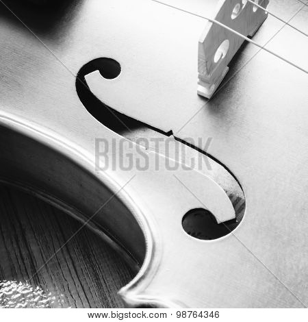 Violin On Wood Background Black And White Color Tone Style