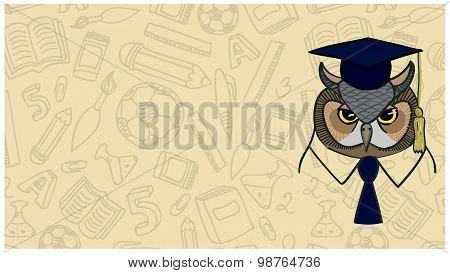 Symbol Of Wisdom Owl On Background Contour School Facilities