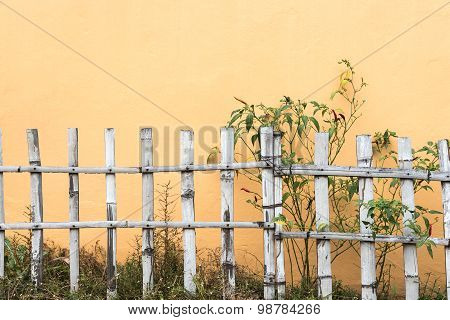 Fences walls bamboo grass