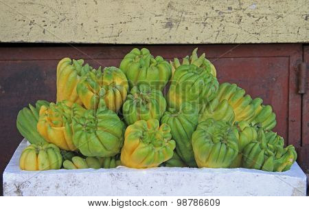 Buddha's hand fruit, fingered citron, Citrus medica