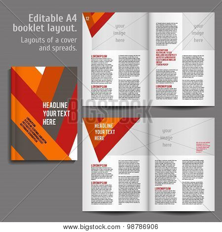 A4 book  Layout Design Template