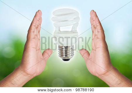 Two Hand Holding Fluorescent Light Bulb On Nature Background