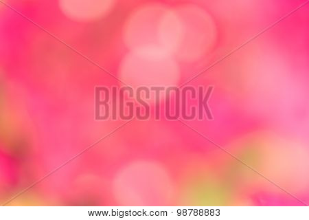 bokeh pink color background.