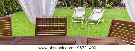 Green And Sunny Garden