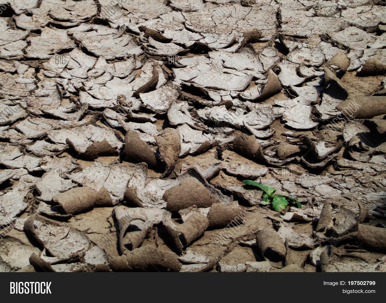 Soil background image