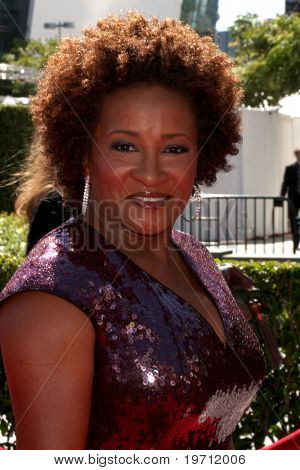 LOS ANGELES - AUG 21:  Wanda Sykes arrives at the 2010 Creative Primetime Emmy Awards at Nokia Theater at LA Live on August 21, 2010 in Los Angeles, CA