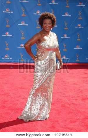 LOS ANGELES - AUG 29:  Wanda Sykes arrives at the 2010 Emmy Awards at Nokia Theater at LA Live on August 29, 2010 in Los Angeles, CA