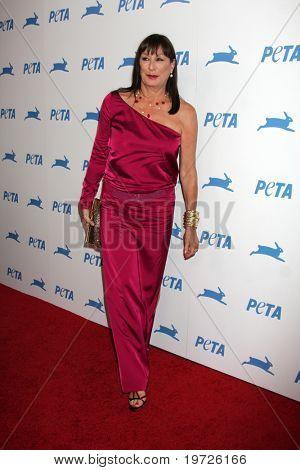 LOS ANGELES - SEP 25:  Anjelica Huston arrives at the PETA 30th Anniversary Gala at Hollywood Palladium on September 25, 2010 in Los Angeles, CA