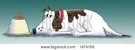 Dog_Bowl