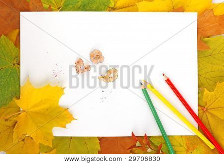 Hojas, papel y lápices