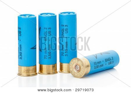 Isolated Shotgun Shells