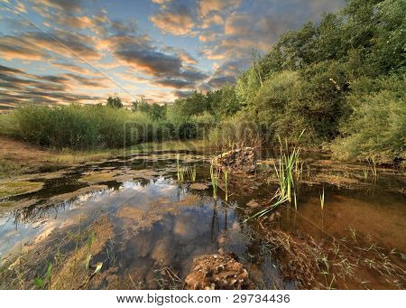 Beautiful summer landscape on a decline