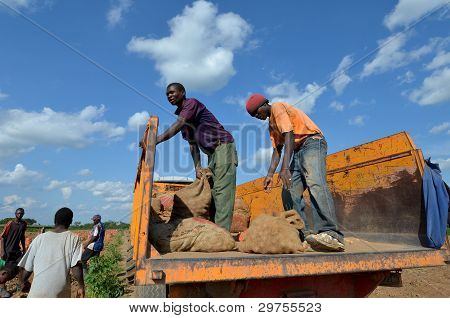 African farmes