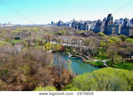 View Of Central Park And New York City