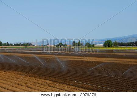 Riego de cultivos