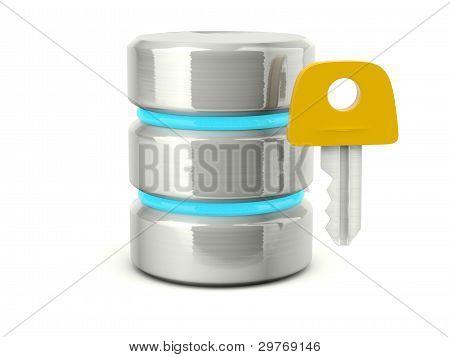 Metallic access data base icon