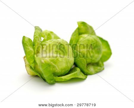 Arrangement of brussels sprouts