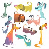 Cartoon Dogs Set. Vector Illustrations Of Dogs.  Retriever, Dachshund, Terrier, Pitbull, Spaniel, Bu poster