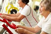 stock photo of tilt  - Tilt up of two active senior women doing fitness at gym - JPG