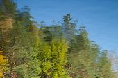 Abstract Background: Reflection Of The Autumn Deciduous Forest In The Pond. Blue Sky And Leaves Refl poster