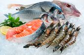 stock photo of saltwater fish  - Seafood on ice at the fish market - JPG