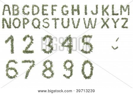 Christmas Or Nature Alphabet Made From Needles Isolated On White Background