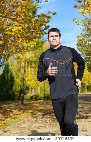 Healthy Runner In Park