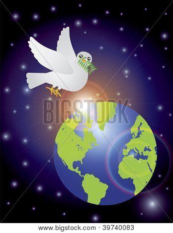 Peace Dove Olive Leaves Night Scene