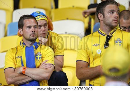 Swedish Soccer Fans