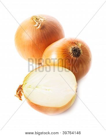 Onion Bulbs Isolated