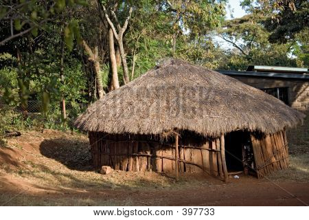 House 003 Africa