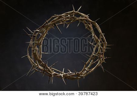 Crown made out of thorns against a neutral background