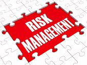 Risk Management Shows Identifying And Evaluate