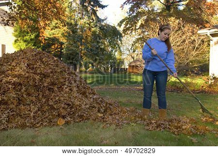 Raking Leaves Girl Next To Leaf Pile