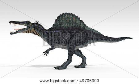 spinosaurusisolated