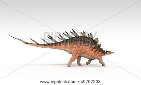 kentrosaurus isolated