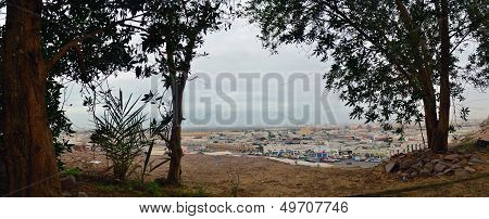 jeddah from behind the trees