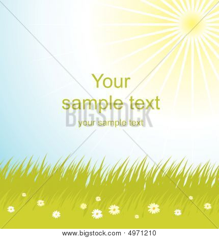 Vector Illustration  Of Green Grass And Sky