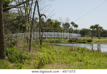 Chain Of Lakes Park In Florida