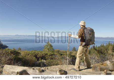 Full length rear view of young man with hiking pole on coastal track